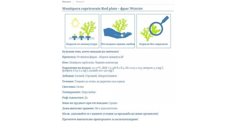 Какво означават описанията на коралите