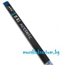 ATI T5 - Actinic 39 Watt