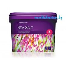 Sea Salt 10 kg