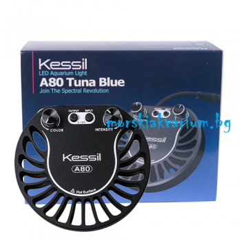Kessil A80 Tuna Blue LED осветление