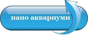 https://morskiakvarium.bg